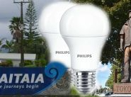 Tiny towns in NZ benefit from Army light-bulb moment