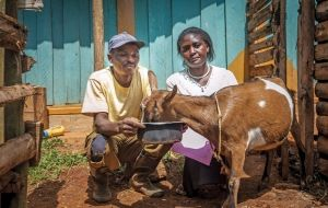 Salvation Army livestock program improves livelihoods of Kenya's most vulnerable